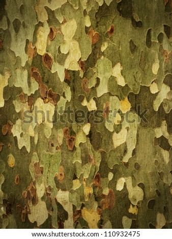 Camouflage background from tree bark with dark vignette