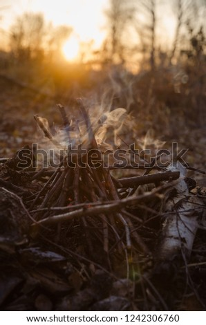 Camp fire and smoke in the copse in sunrise, october