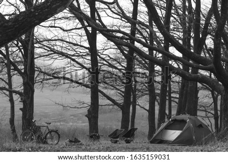 Camp in the forest. Camping tent and portable chairs and aluminum table. Cold autumn day. concept of vacation and outdoor activities. Nobody. space for text. bonfire and bicycle. Black and white