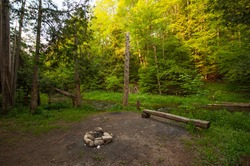 Camp site, fire pit next to stream/ river in the forest / woods with green trees morning/evening sunrise/sunset