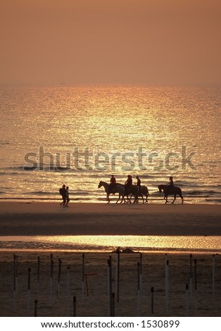 Campers on horses in the light of sunset
