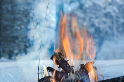Campfire burns in the snow in the woods, on a background of snow covered trees. campfire burning in cold winter. Snow, forest and fire. Winter. Tourism. Flames on snow. Winter background. Nature.