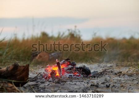 campfire during summer evening. summer evening campsite #1463710289