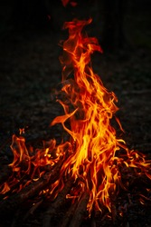 Campfire in the night, hot burning flames