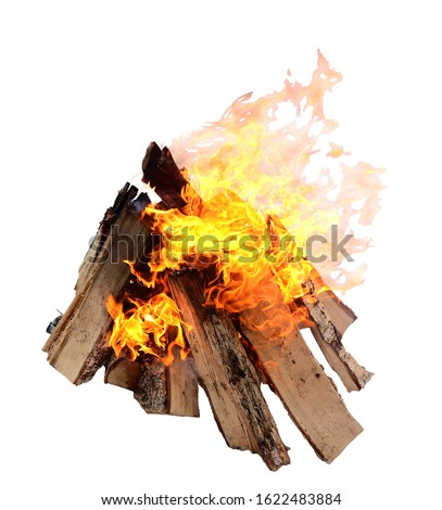 Campfire isolated on white background. Closeup of a pile of firewood burning with orange and yellow flames. Сток-фото ©