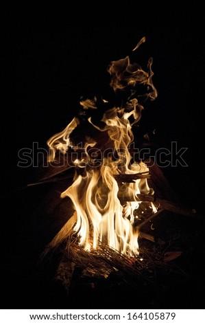 Campfire on a summer night