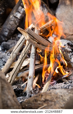 Campfire - This is a shot of a freshly lit campfire.