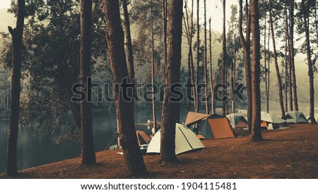 Camping and tent under the pine forest in sunset at north of Thailand. Pang ung park and Morning in forest with camping in the mist, Pangung, Mae Hong Son, Thailand.