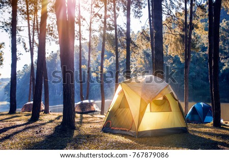 Camping and tent under the pine forest near the lake with beautiful sunlight in the morning  #767879086
