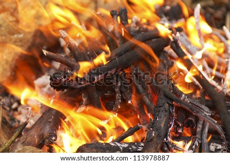 camping - burning wood on small campire surrounded by stones