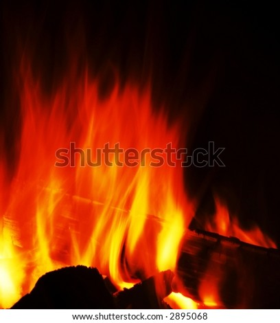 Camping fire on the black background - stock photo