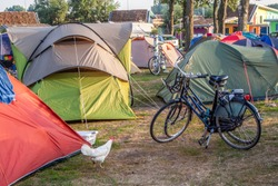 Camping for young adults with bikes and one chicken