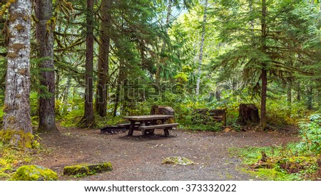 Camping in the forest #373332022