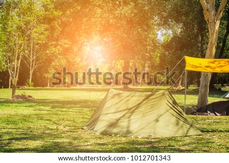 Camping on the grass in the forest bordered tourism and relaxation. Concept nature tourism. #1012701343