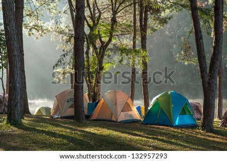 camping point #132957293