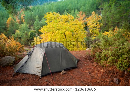 camping tent autumn morning in mountains