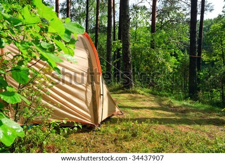 Camping tent in a sunny forest after rain