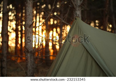 Camping tent in the forrest with sunset
