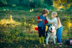 Camping tourism and vacation concept. Carefree childhood. A little blond girl and cute boy with her pet dog outdooors in park. Childhood memories