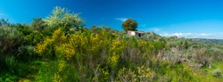 Campsite with glamour in Faia Brava nature reserve within Côa Valley in northern Portugal of Europe