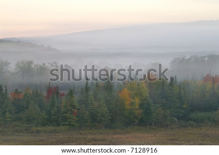 Canaan Valley State Park West Virginia on a Foggy Autumn Morning
