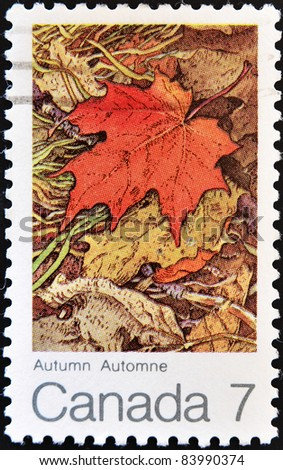 CANADA - CIRCA 2000: A stamp printed in Canada shows image of a maple leaf in autumn, a symbol of Canada, series, circa 2000