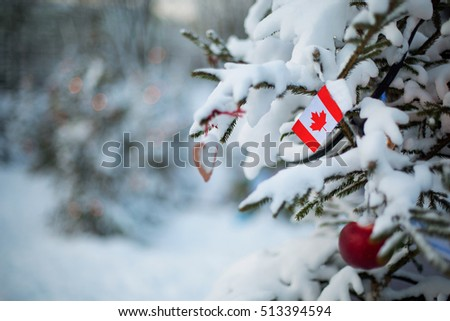 Canada flag Christmas holiday greeting card. Christmas tree covered with snow and Canadian flag. White winter scene background outdoor. Xmas card design.