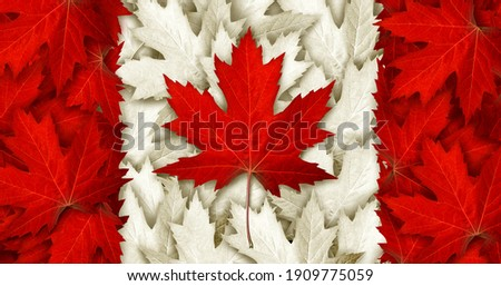 Canada leaf flag made with as red maple leaves for an autumn symbol as a canadian pride seasonal themed concept and as an icon of the fall weather in a 3D illustration style. Photo stock ©