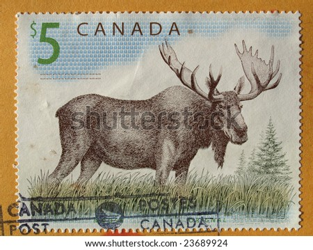 Canadian postage stamp from Canada with deer moose