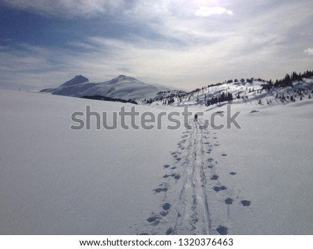 Canadian Rockies Backcountry Skiing #1320376463