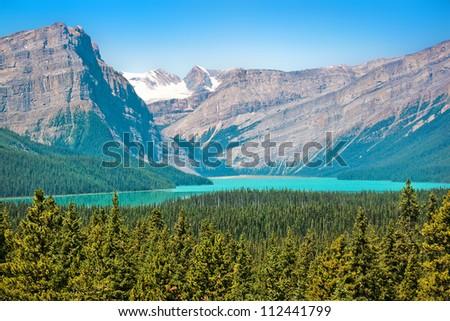 Canadian wilderness in Jasper National Park, Alberta, Canada