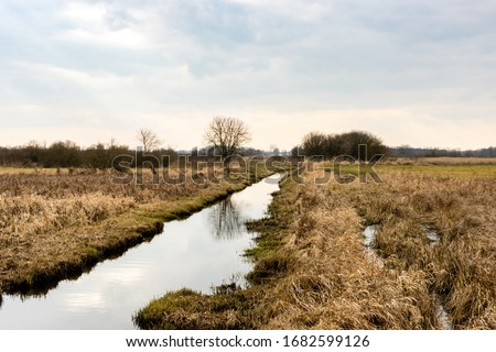 Canal ditch with water landscape view at drained wetland. Natura 2000 Bagno Pulwy protected area in Poland. Foto d'archivio ©