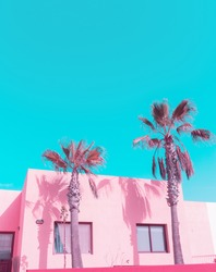 Canary island. Palm. Pink Pastel colours trend. Fashion travel vibes