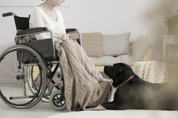 Cancer patient on a wheelchair overcoming tumor with her dog during pet therapy