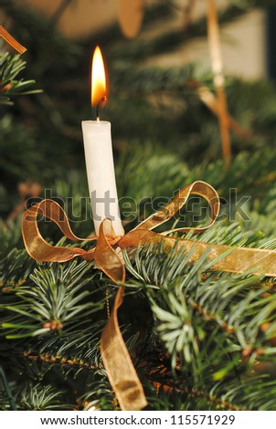 candle and golden ribbon on christmas pine branch