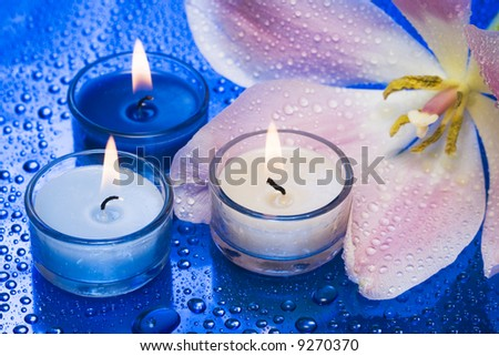 Candles with flower on blue background