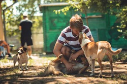 Canine Rehabilitation Therapist for dog rehabilitation program. Young dog trainer holds a stray dog with a behavioral problem in his arms while carrying him