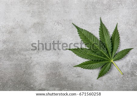 cannabis background #671560258