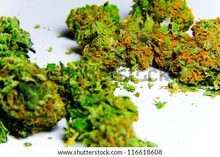 Cannabis 3. High grade marijuana against a white background.