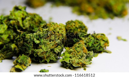 Cannabis 2. High grade purple kush marijuana against a white background.