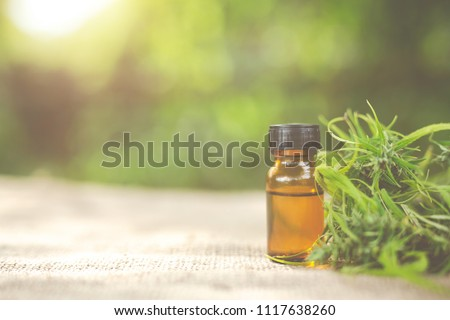 Cannabis oil, CBD oil cannabis extract, Medical cannabis concept.