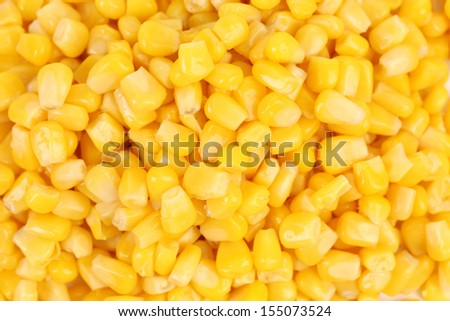 Canned corn background. Whole background. Close up