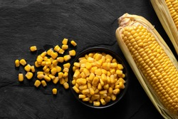 Canned sweet corn in a black ceramic bowl next to two corn cobs in husks and spilled corn on black slate. Top view.