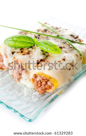 cannelloni with ragout isolated