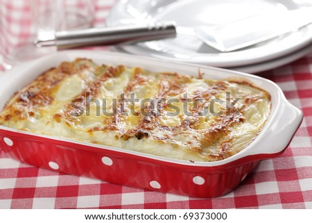 Cannelloni with ricotta cheese and spinach under bechamel sauce