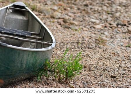 Canoe on the Beach with Sprouting Plants