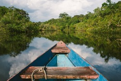 Canoeing through the flooded forest in the Amazon Jungle, Brazil