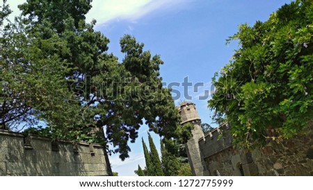 Canopy of lush trees branches with the green leaves & wisteria, growing beautifully with masses of lush, dense, green foliage, are over a medieval castle style diabase stone fence / defense wall.
