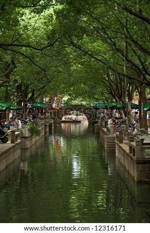 Canopy of trees over waterway and bridge in Tongli, China