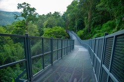 Canopy walkway ,Thailand's longest treetop walkway opens at the Queen Sirikit Botanical Garden